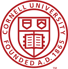 Cornell Engineering Experience