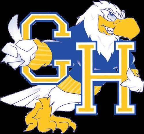 Hayden Logo Falcon